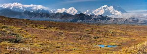 denali_D5C1914__D5C2115-177-images-[Group-4]